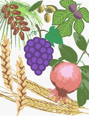 The Torah praises the Land of Israel by praising seven of its fruits: wheat, barley, grapes, figs, pomegranates, olives and dates.  On Tu Bshvat, the annual Jewish holiday celebration for the trees, we try to eat as many foods from the Shivas Haminim.