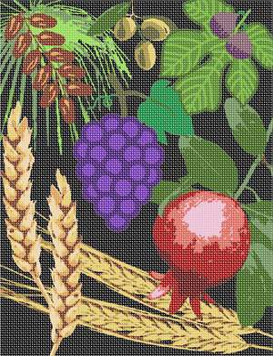 The seven species of the Holy Land.  This one features a dark background. Wheat, barley, grapes, pomegranate, olive, date, and fig.