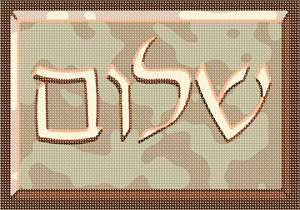 Needlepoint: Shalom Engraved