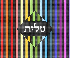 Colorful and chic, this design is a winner. Geometrics are very vogue in tallit and tefillin bags today. You stitch the front. After it is completely stitched, it is sent to a professional finisher who adds a lining, back, and matching zipper.  See coordinating tefillin bag.