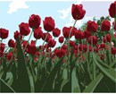 Red tulips look up at the sky.