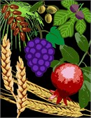 The seven species of the Holy Land.  This one features a dark background.