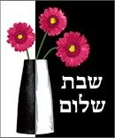 Shabbat Shalom wall hanging to stitch with a modern vase and red flowers