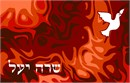 Siddur Dove On Fire
