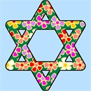 Needlepoint: Star Of David Floral