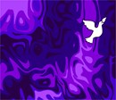 Tallit Dove On Night Sky