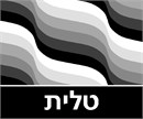 Tallit Waves Greys