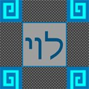 Needlepoint: Tefillin Levy