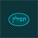 Tefillin bag design in oval with aqua marine accents.