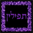 Tefillin Purple Pebbles