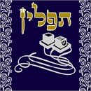 Needlepoint: Tefillin Metallic
