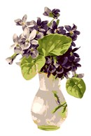 A vase with pretty purple flowers, in an neat and eye-pleasing arrangement.